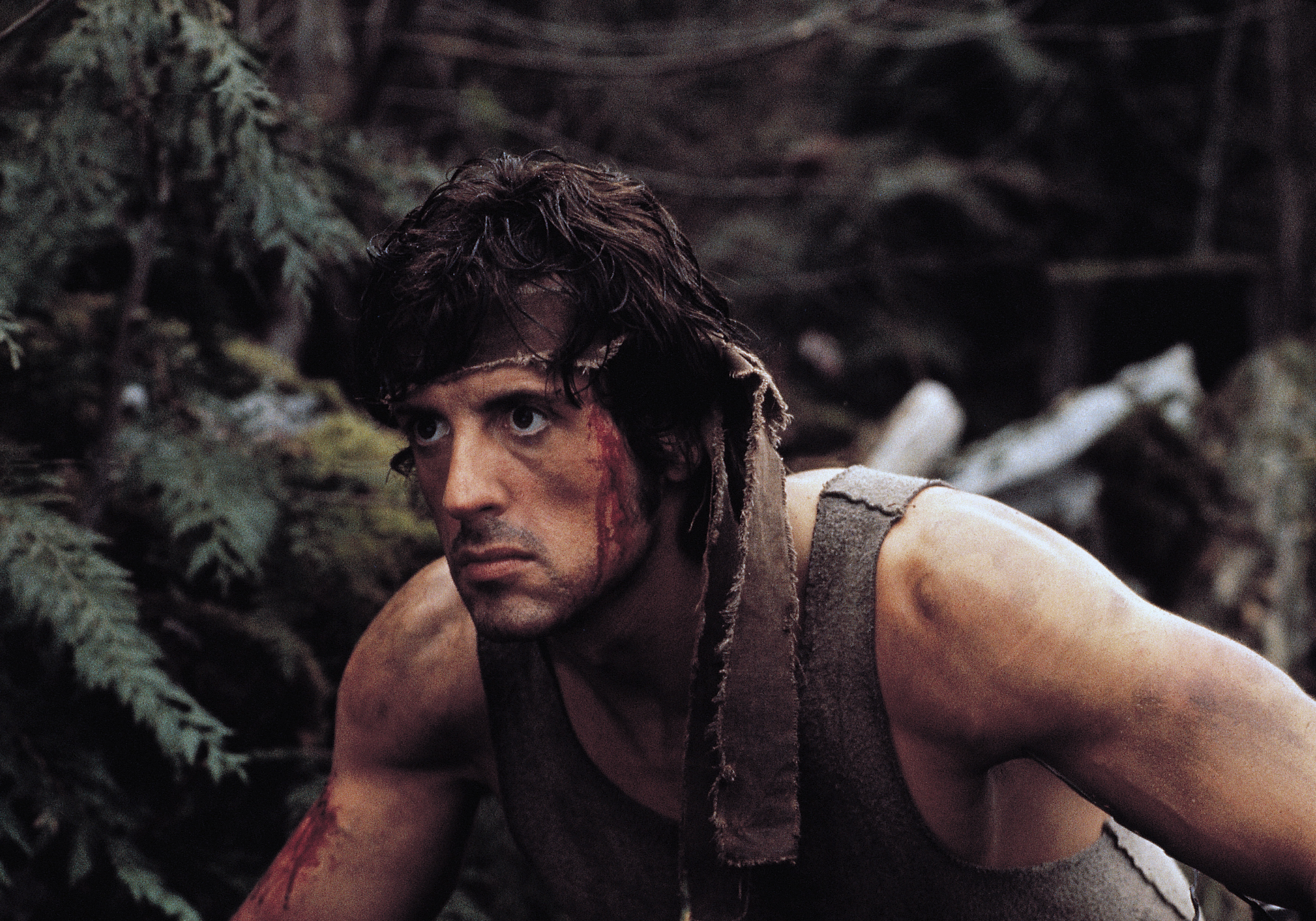 First Blood: How Sylvester Stallone took over Hollywood | Hollywood