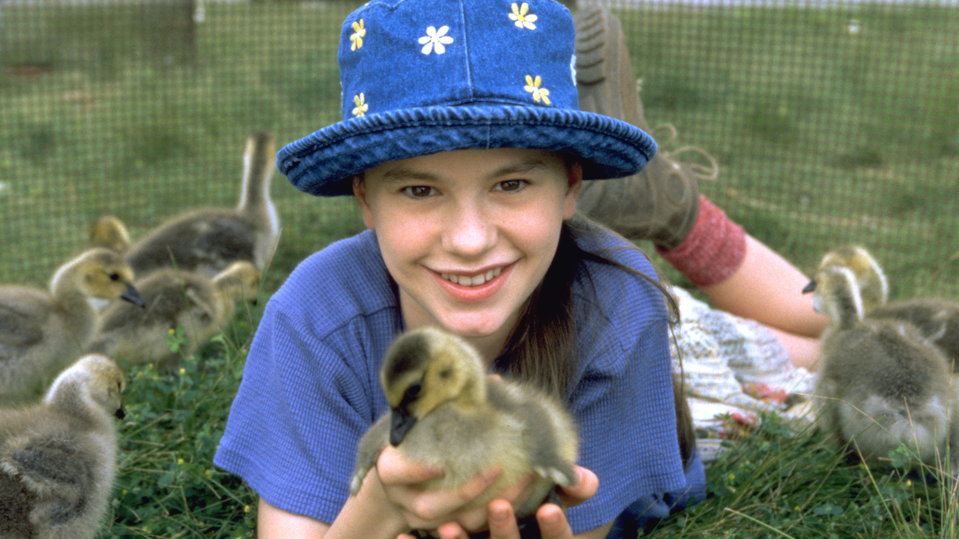 Anna Paquin in Fly Away Home: Father's Day Films on Hollywood Suite