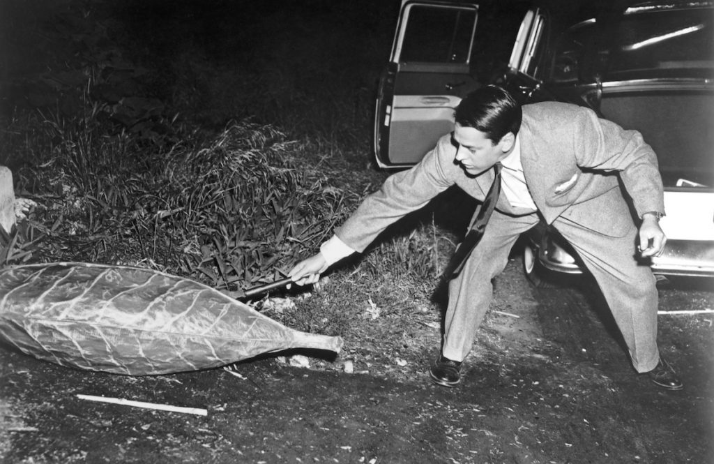Kevin McCarthy investigates an alien seed pod in Invasion of the Body Snatchers 1956
