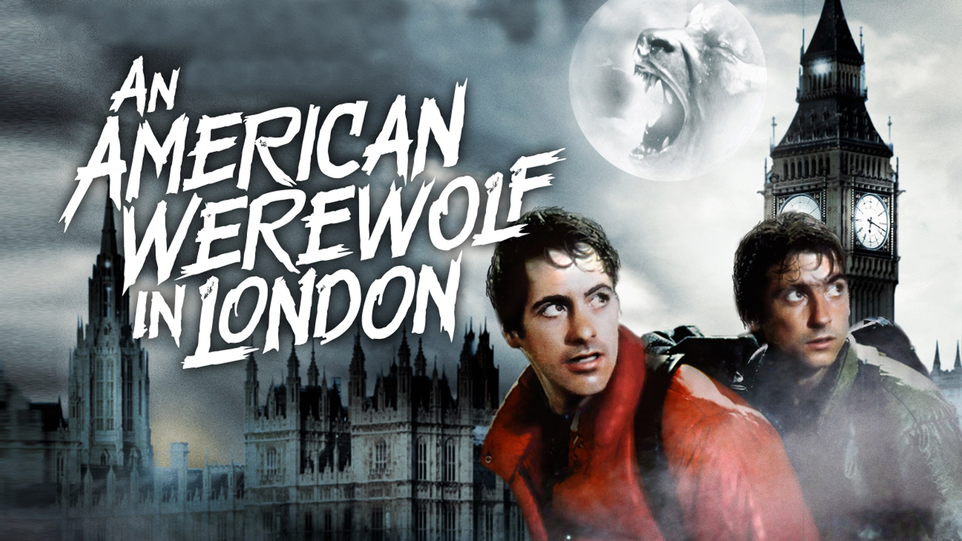 An American Werewolf In London Hollywood Suite