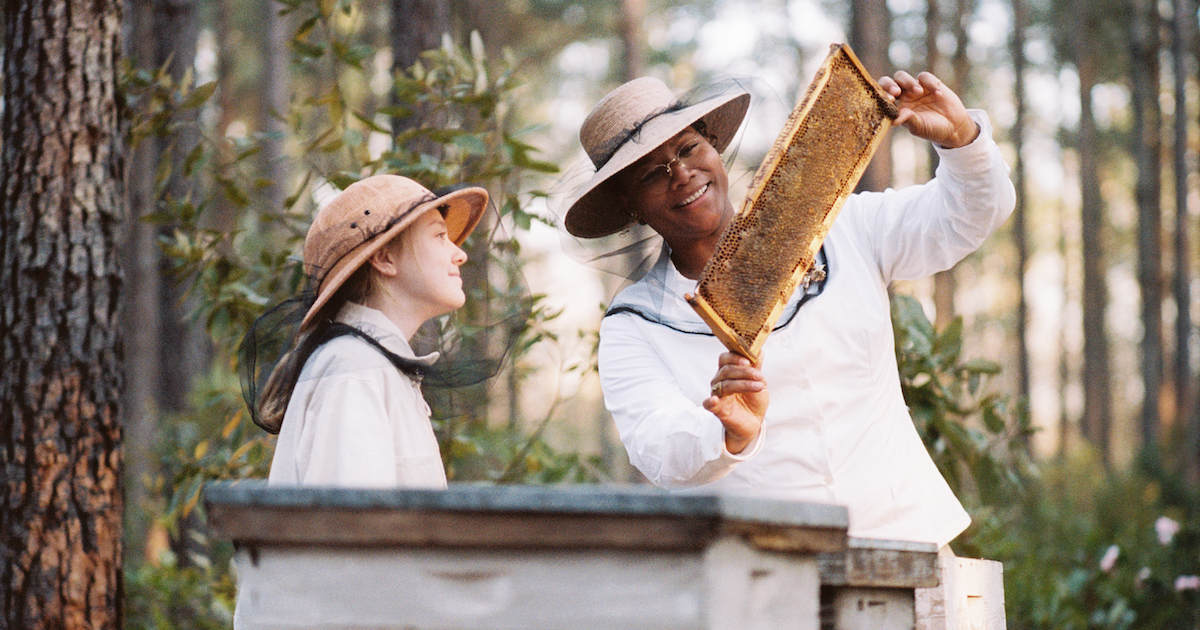 Queen Latifa and Dakota fanning inspect a bee hive in The Secret Lives of Bees